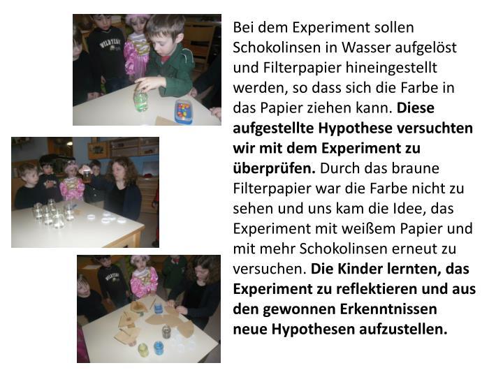 Bei dem Experiment sollen Schokolinsen in Wasser aufgelöst und Filterpapier hineingestellt werden,