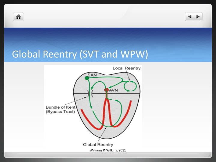 Global Reentry (SVT and WPW)