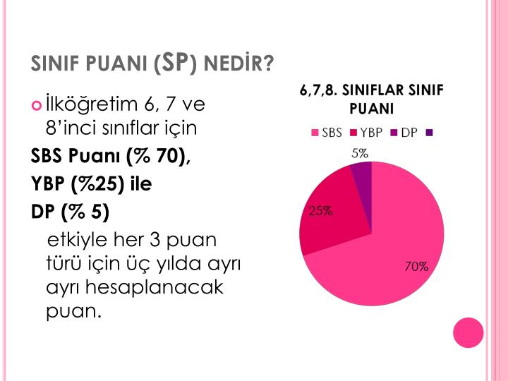 SINIF PUANI (