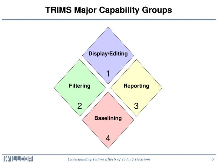 TRIMS Major Capability Groups