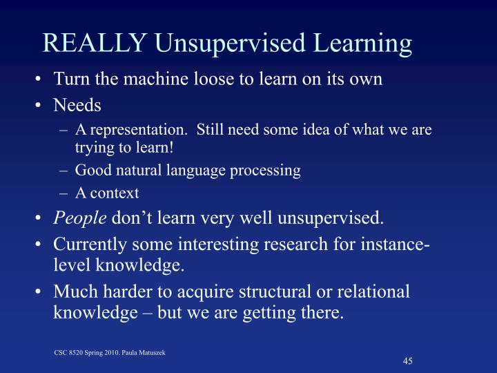 REALLY Unsupervised Learning