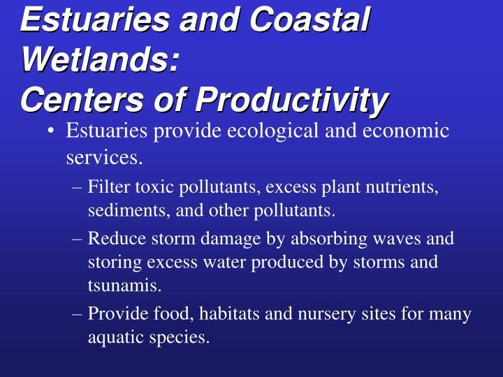 Estuaries and Coastal Wetlands:
