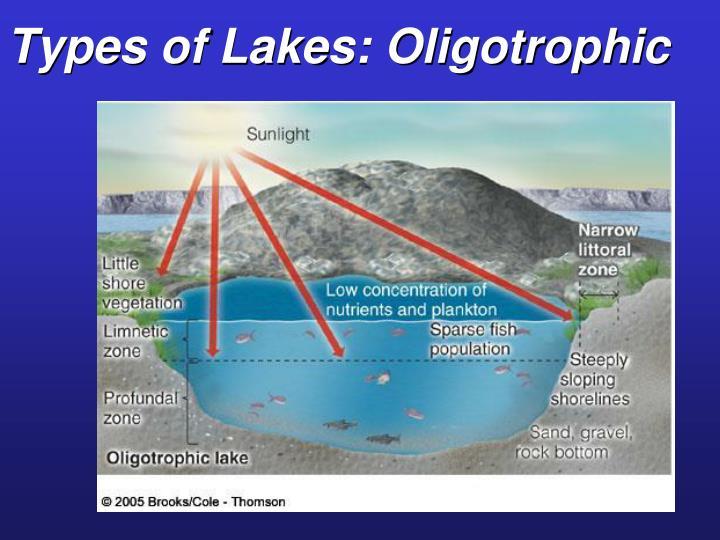 Types of Lakes: Oligotrophic