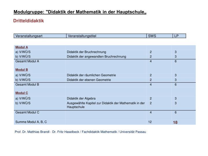 """Modulgruppe: """"Didaktik der Mathematik in der Hauptschule"""""""