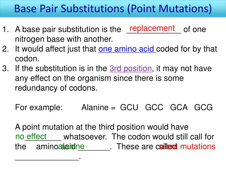 Base Pair Substitutions (Point Mutations)