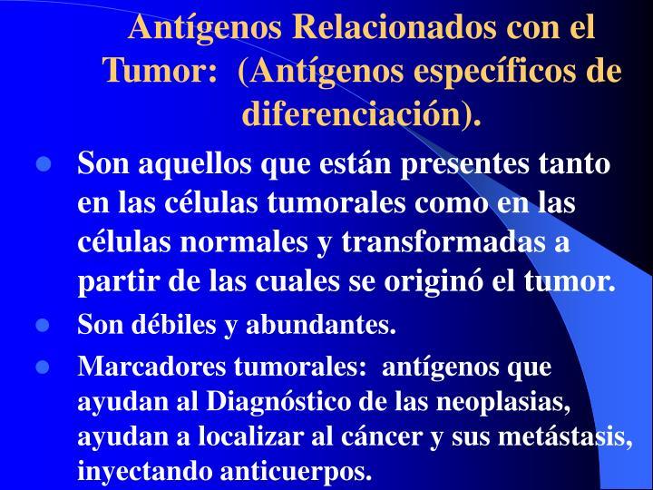 Antígenos Relacionados con el Tumor: