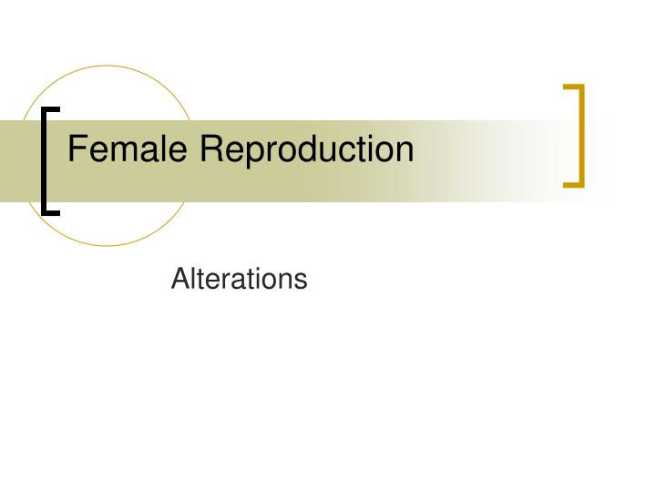 Female reproduction