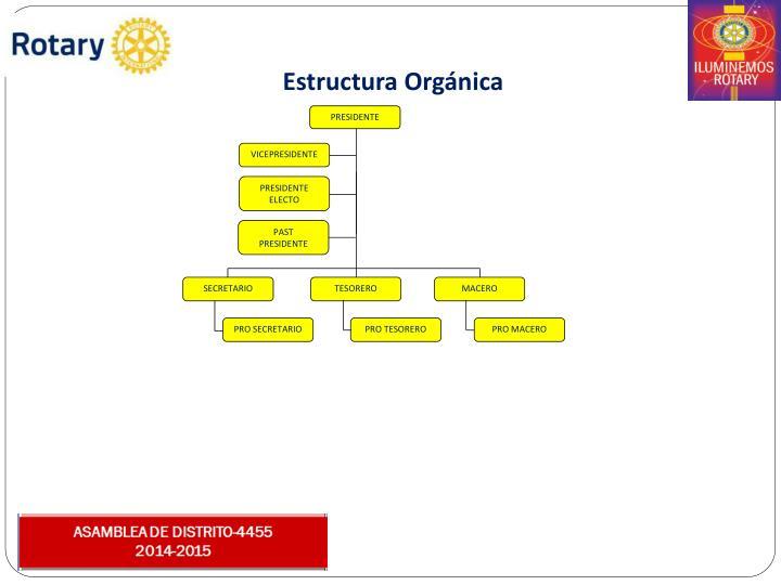 Estructura Orgnica
