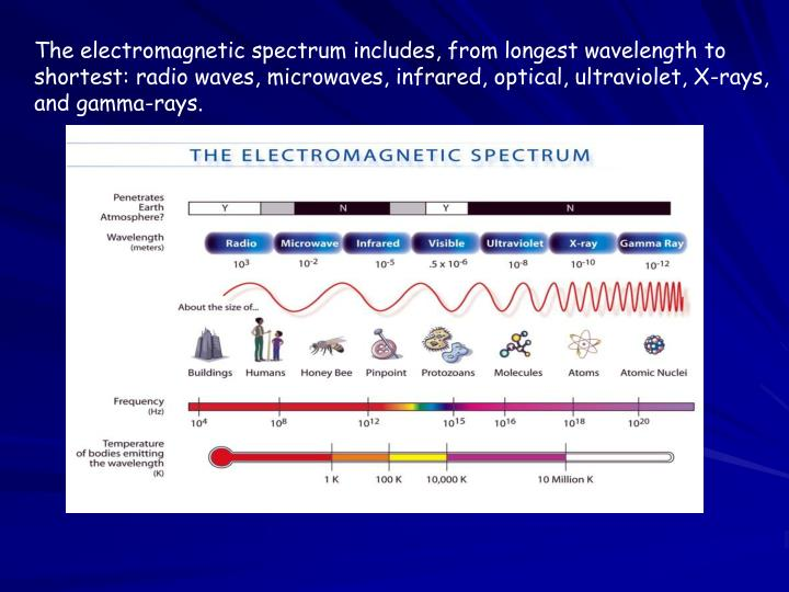The electromagnetic spectrum includes, from longest wavelength to shortest: radio waves, microwaves, infrared, optical, ultraviolet, X-rays, and gamma-rays.