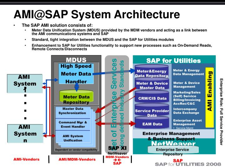 The SAP AMI solution consists of: