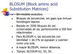 blosum block amino acid substitution matrices