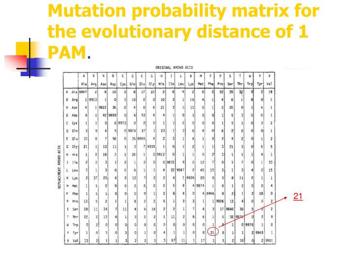 Mutation probability matrix for the evolutionary distance of 1 PAM