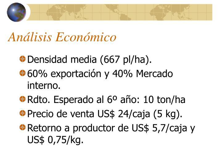 Análisis Económico