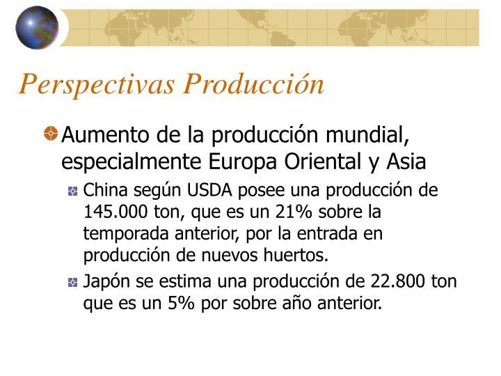 Perspectivas Producción