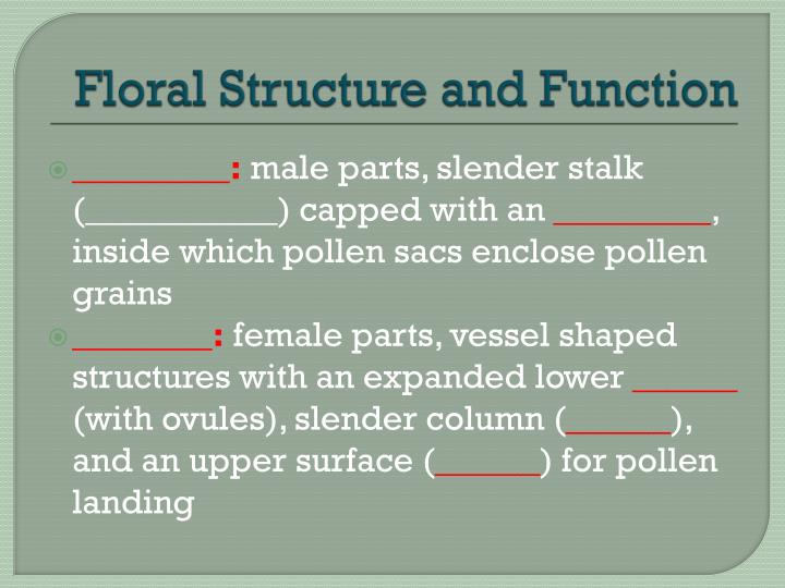 Floral Structure and Function