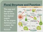 floral structure and function5