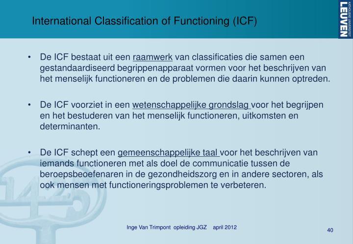 International Classification of Functioning (ICF)