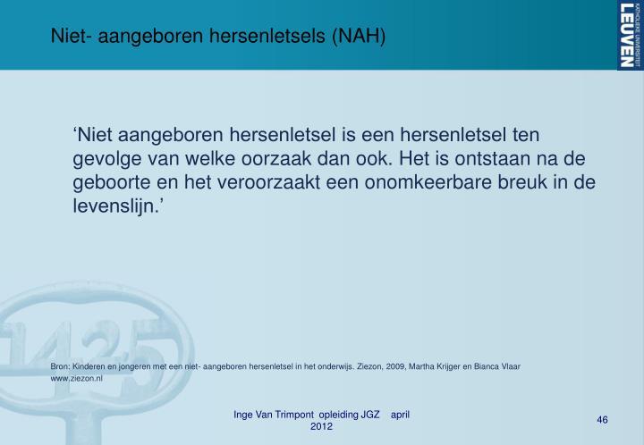 Niet- aangeboren hersenletsels (NAH)