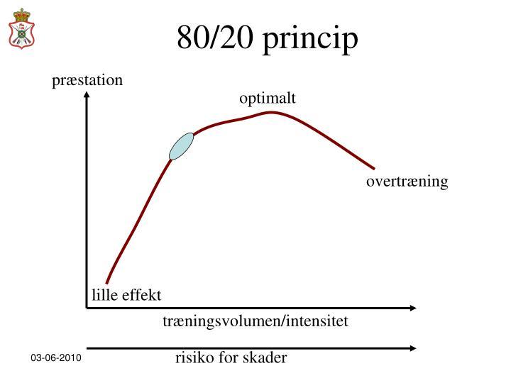 80/20 princip
