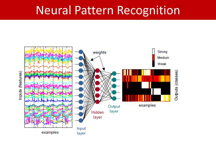 Neural Pattern Recognition