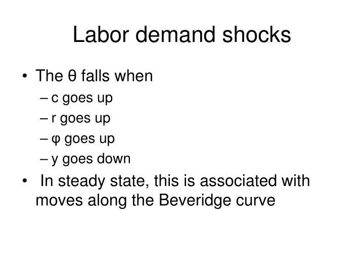 Labor demand shocks