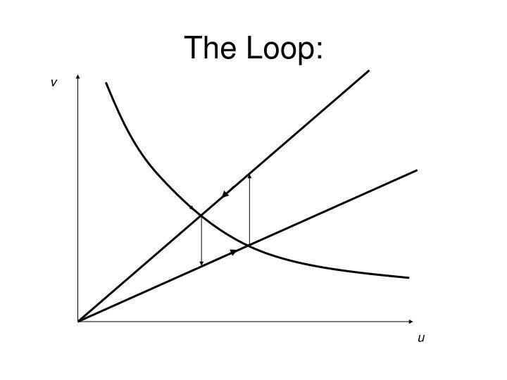The Loop: