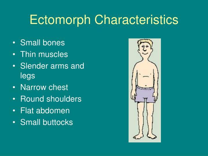 Ectomorph Characteristics