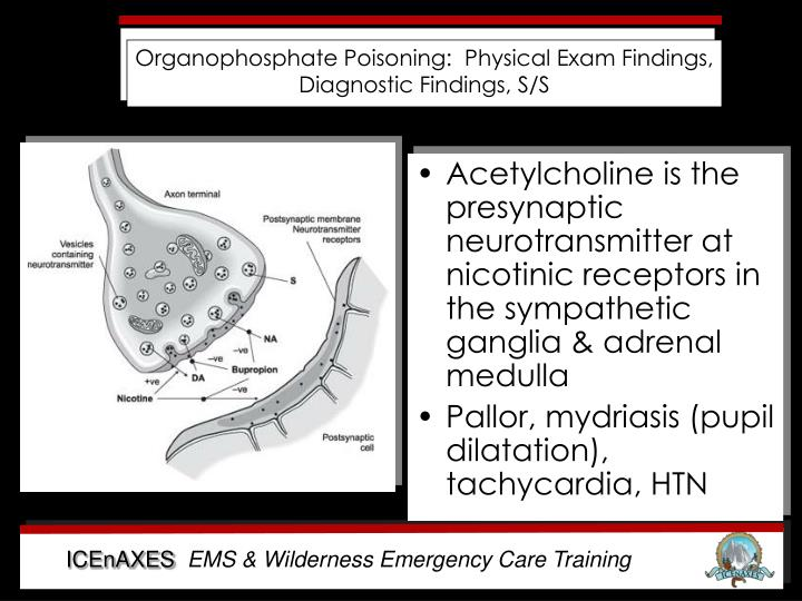 Organophosphate Poisoning:  Physical Exam Findings, Diagnostic Findings, S/S