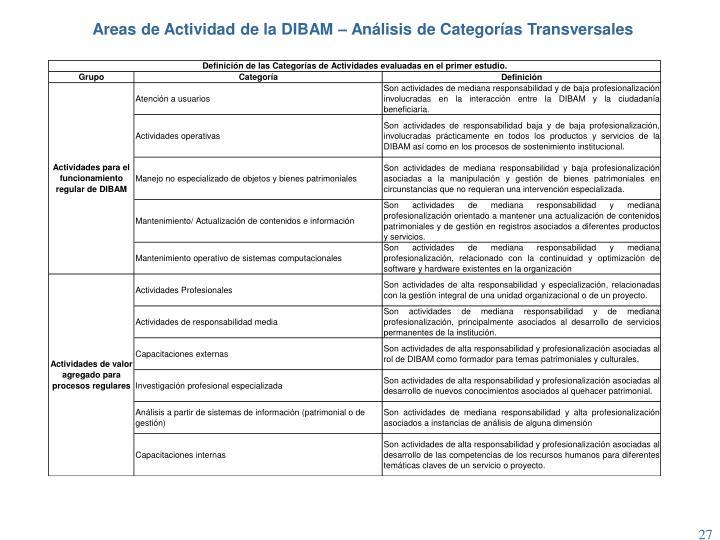Areas de Actividad de la DIBAM – Análisis de Categorías Transversales