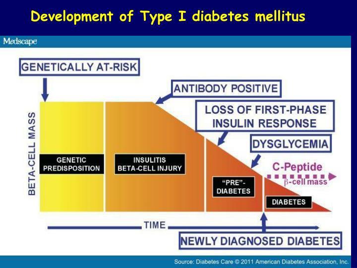 Development of Type I diabetes mellitus