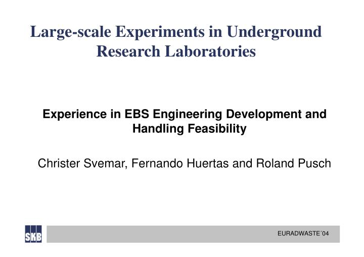 Large scale experiments in underground research laboratories