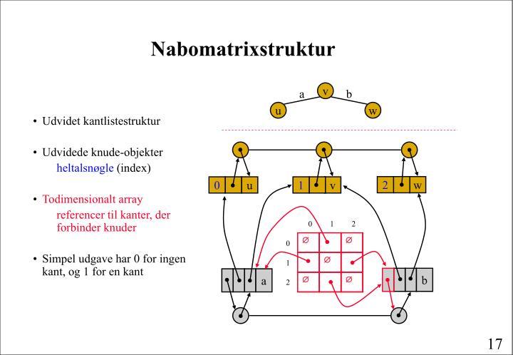 Nabomatrixstruktur