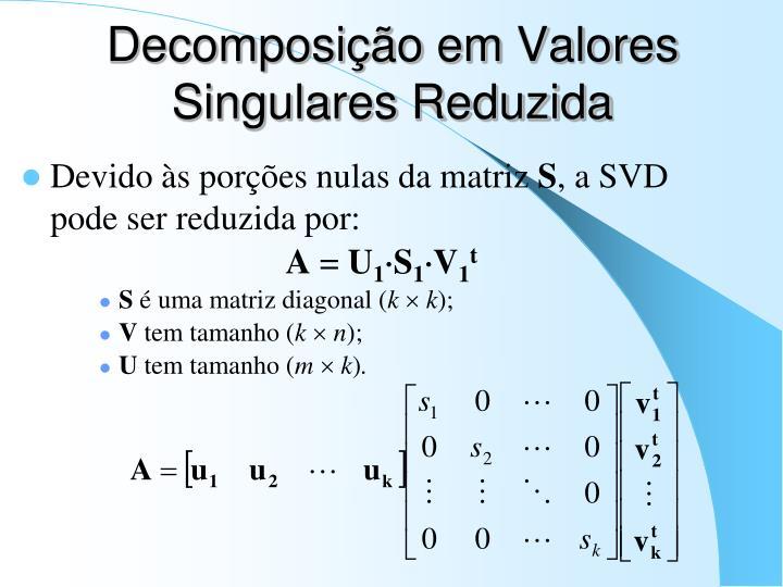 Decomposição em Valores Singulares Reduzida