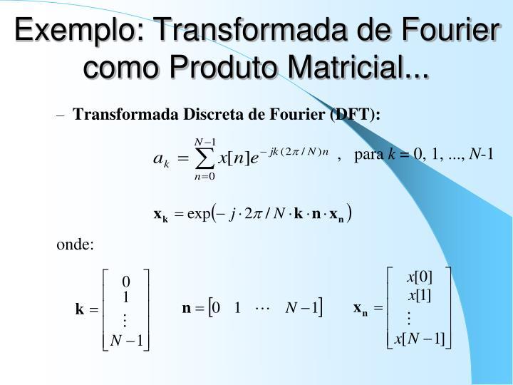 Exemplo: Transformada de Fourier como Produto Matricial...