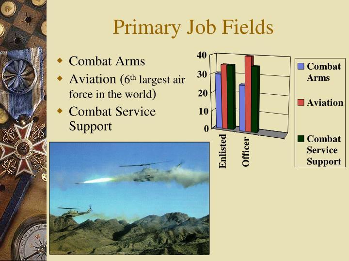 Primary Job Fields