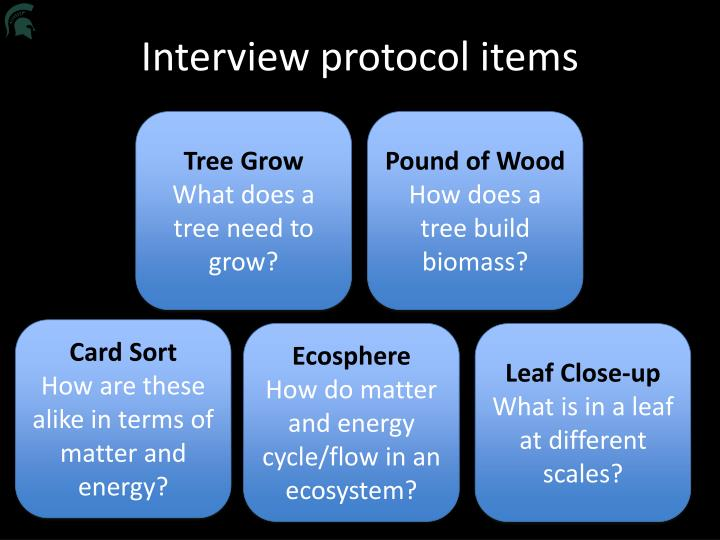 Interview protocol items