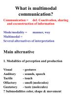 what is multimodal communication