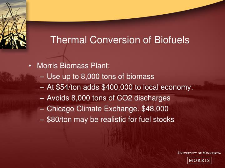 Thermal Conversion of Biofuels