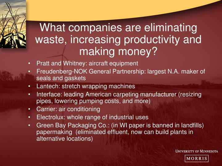 What companies are eliminating waste, increasing productivity and making money?