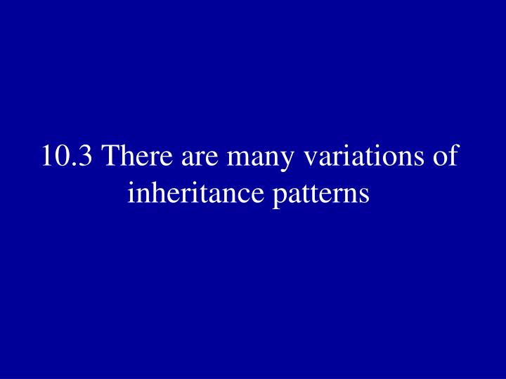 10.3 There are many variations of inheritance patterns