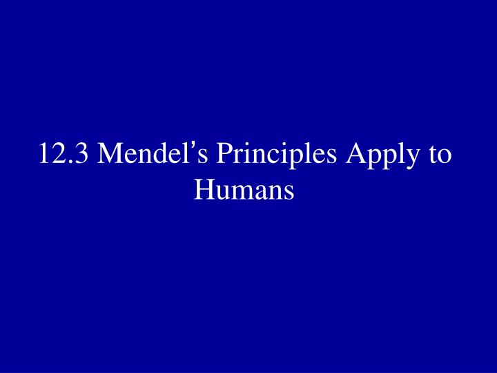 12.3 Mendel