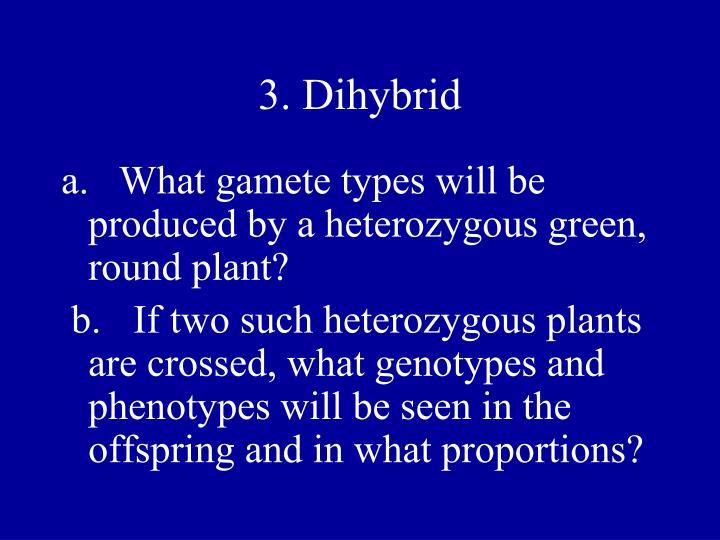 3. Dihybrid