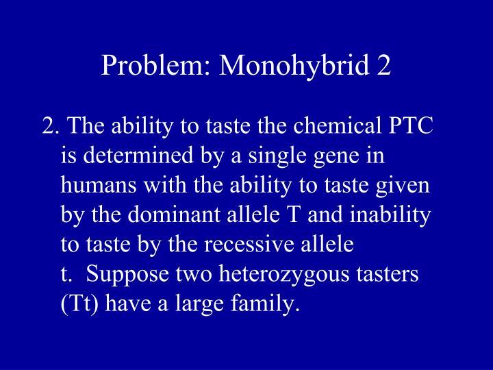 Problem: Monohybrid 2