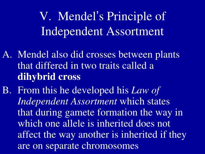 V.  Mendel