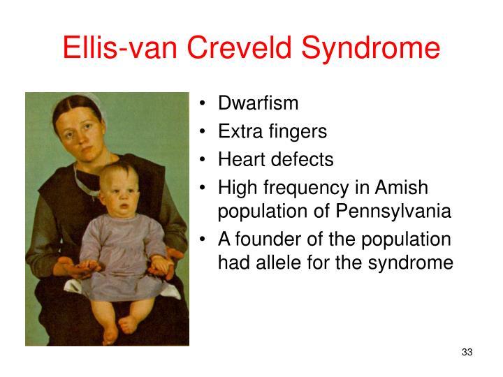 Ellis-van Creveld Syndrome
