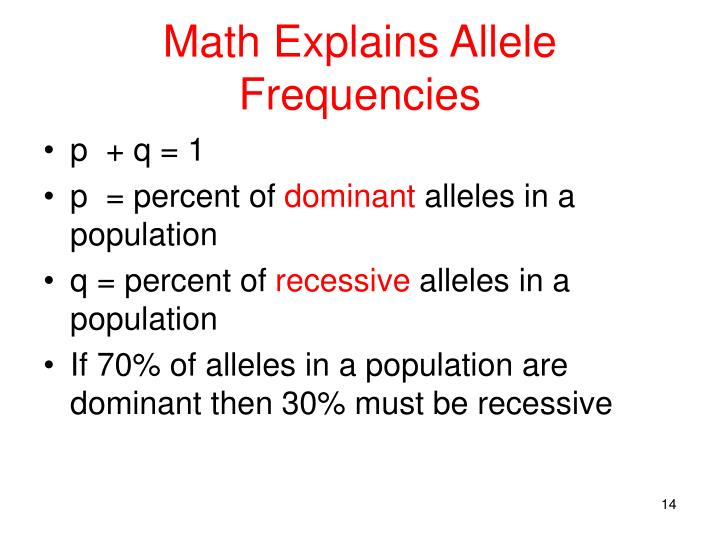 Math Explains Allele Frequencies