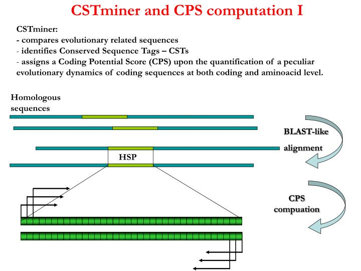 CSTminer and CPS computation I