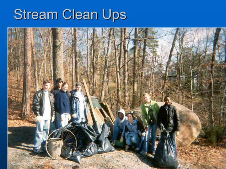 Stream Clean Ups