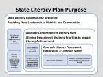 state literacy plan purpose