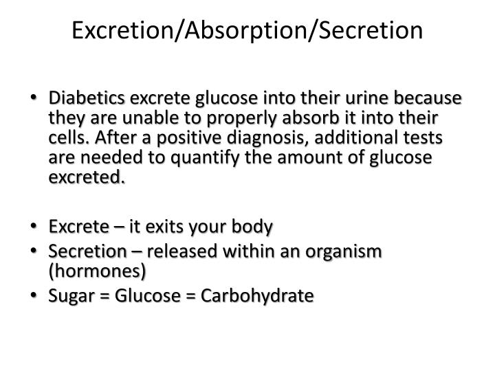 Excretion/Absorption/Secretion